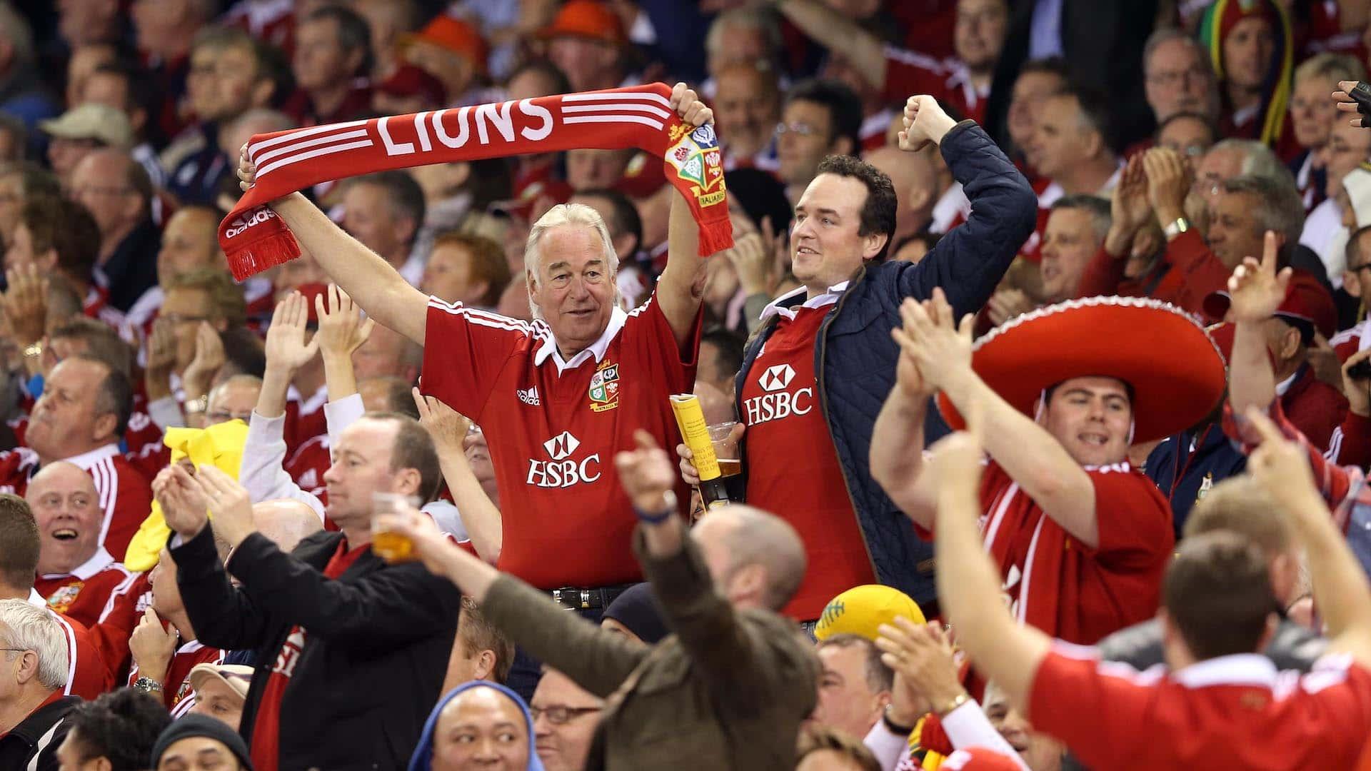 Lions fans during the game in Australia 2013